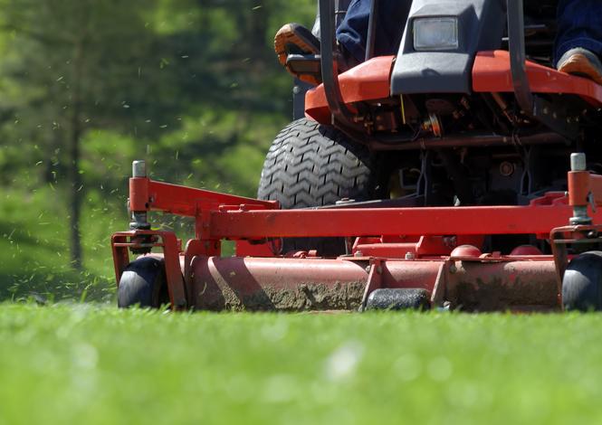 Devis jardinier paysagiste pas cher