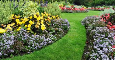 Devis jardinier paysagiste domicile pas cher en ligne for Jardinier pas cher